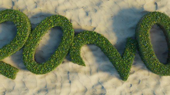 10 resoluções para um 2020 mais sustentável